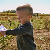 Teaching Children About Organic Farming