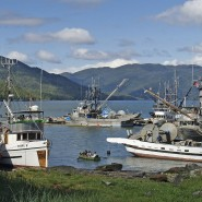 Salmon Farming At Domestic Fish Farms – Sustainable Aquaculture