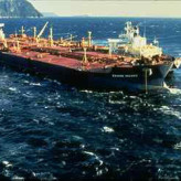 Exxon Valdez Oil Spill and the Environmental Effects