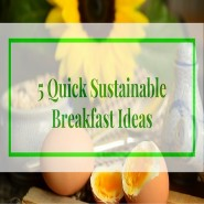 Mind Blowing Sustainable Food Ideas