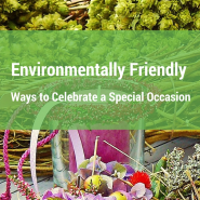 Environmentally Friendly Ways to Celebrate a Special Occasion