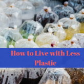How to Live with Less Plastic
